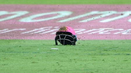 Salah satu helm atlet kriket diserang lebah. - INDOSPORT