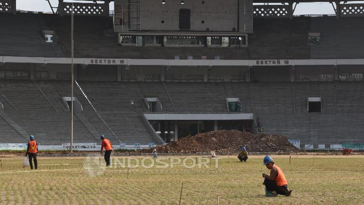 Beberapa pekerja sedang merawat kondisi rumput Stadion GBK.