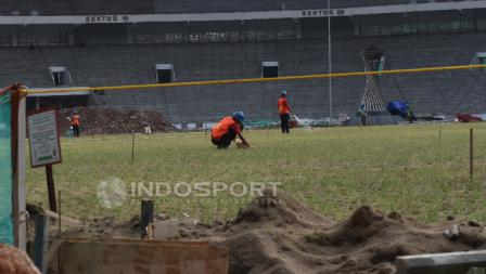 Beberapa pekerja sedang merawat rumput Stadion GBK.