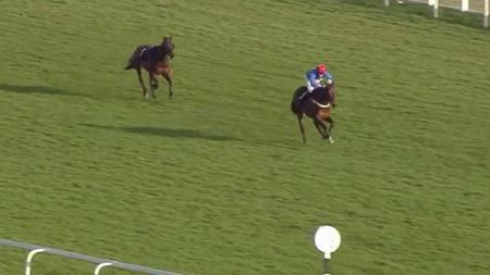 Seekor kuda tanpa joki mewarnai kompetisi balap kuda di Inggris. - INDOSPORT