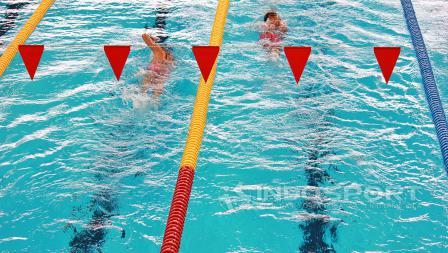 Persaingan para peserta Masters Swimming