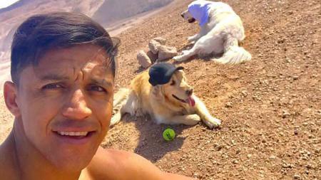 Alexis Sanchez latihan bersama dua anjingnya - INDOSPORT