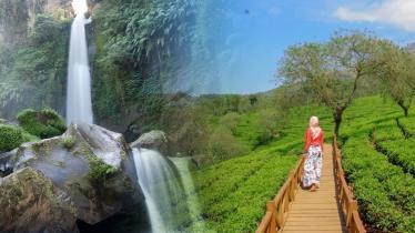 Air Terjun Coban Rondo Malang dan kebun teh Wonosari - INDOSPORT