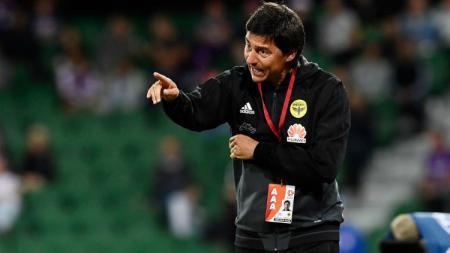 Darije Kalezic, pelatih asal Bosnia yang dirumorkan melatih PSM Makassar di Liga 1 2019. - INDOSPORT