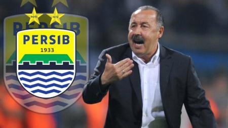 Cocok Latih Persib Bandung? - INDOSPORT