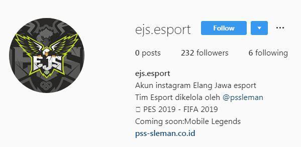Hasil gambar untuk pss sleman Elang Jawa esports