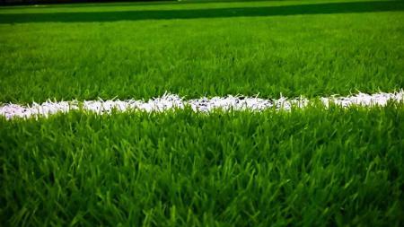 Ilustrasi lapangan sepak bola. - INDOSPORT