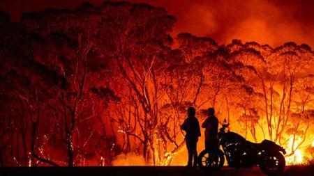 Kebakaran hutan di Australia jadi sorotan sejumlah pemain NBA. - INDOSPORT