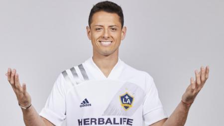 Javier Hernandez Chicharito gabung LA Galaxy gantikan Ibrahimovic yang kembali ke AC Milan di bursa transfer musim dingin. - INDOSPORT
