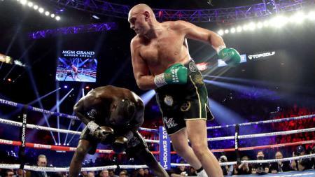 Tyson Fury vs Wilder. - INDOSPORT