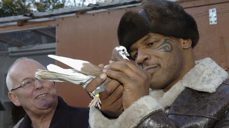 Gara-gara merpati piaraannya buang kotoran sembarangan, Mike Tyson ribut dengan tetangga. - INDOSPORT