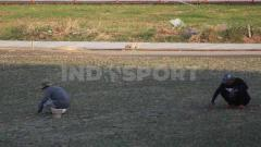 Indosport - Pekerja menanam rumput baru di Stadion Gelora 10 November.