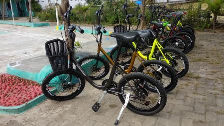 Sepeda Minion yang dijual MO Persik Kendal, Ahmad Saifudin. - INDOSPORT