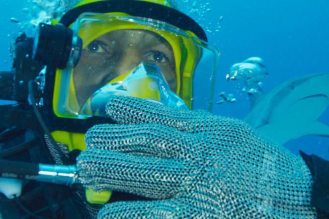 Mike Tyson menyelam bersama ikan hiu. Copyright: Discovery Channel