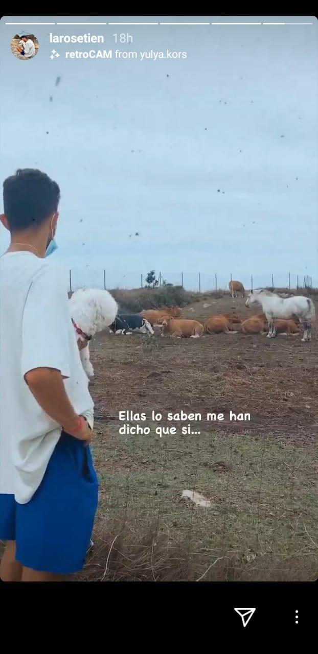 Unggahan Story Laro Setien saat meminta petuah ke sapi agar Barcelona juara Liga Champions Copyright: Instagram/Laro Setien