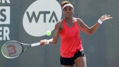 Indosport - Venus Williams di turnamen tenis Lexington.