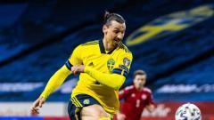 Indosport - Ibrahimovic bela timnas Swedia