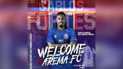 Indosport - Striker baru Arema FC, Carlos Fortes.