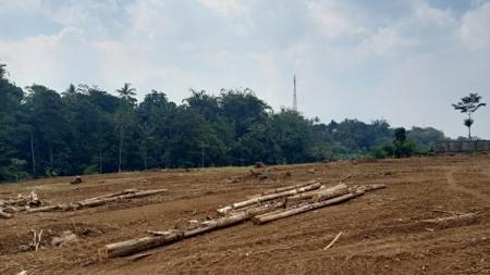 Lahan yang akan dibangun menjadi training center PSIS Semarang di Salamsari, Boja. - INDOSPORT