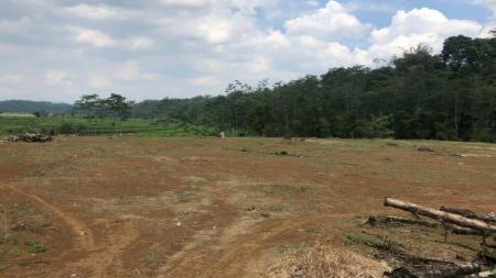 Lokasi pembangunan training center PSIS di Kawasan Salam Sari, Boja, Kabupaten Kendal. - INDOSPORT