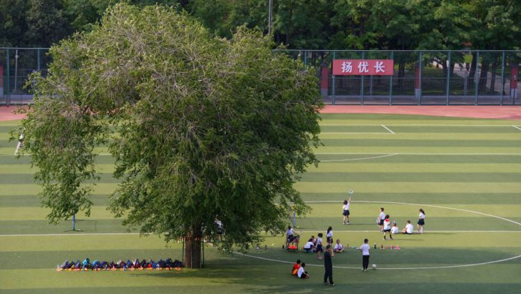 Pohon di tengah lapangan sepakbola di China. Copyright: © The Sun