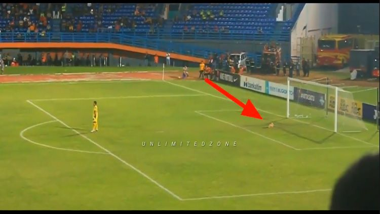 Seekor kucing tiba-tiba masuk ke lapangan pertandingan antara Borneo FC vs Persela. Copyright: © Youtube/Unlimitedzone