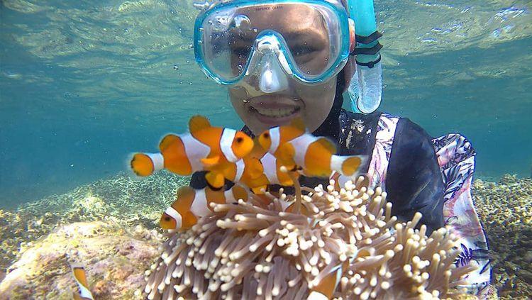 Tanjung Lesung memiliki koral yang indah dan biota laut yang beragam. Copyright: © Instagram@hevanwisata