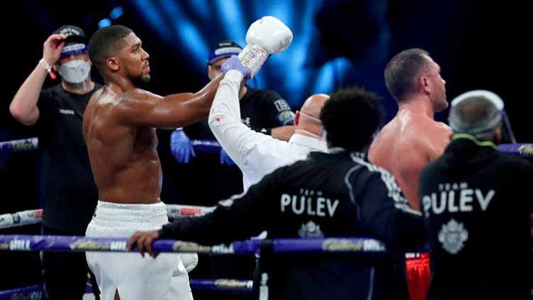 Anthony Joshua menang atas Kubrat Pulev dalam pertarungan gelar Juara Dunia Kelas Heayweight IBF, WBA, WBO dan IBO. Copyright: © Andrew Couldridge - Pool/Getty Images