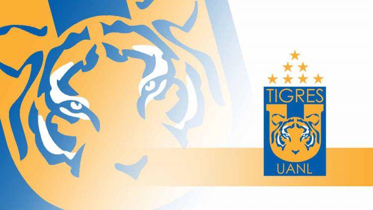 Tigres UANL menjadi tim kejutan di Piala Dunia Antarklub 2021 sebagai klub pertama Meksiko yang sukses melenggang ke final usai menaklukan klub kuat Palmeiras. Copyright: © Grafis:Yanto/Indosport.com